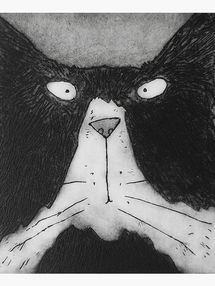 Funny Grumpy Black And White Tom Cat by lucygell
