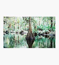 Reflection Pond Photographic Print