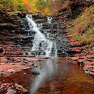 Fall Reflections of F L Ricketts Falls by Gene Walls