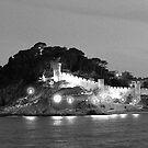 Illuminated Castle by James2001