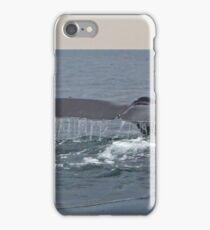 Fluke iPhone Case/Skin