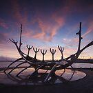The Viking Ship by Luka Skracic
