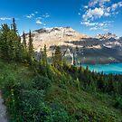 Peyto lake by Dave  Gosling Photography