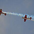 Warbirds Downunder 2013, Yaks by bazcelt