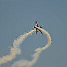 Warbirds Downunder 2013, Russian Roulettes by bazcelt