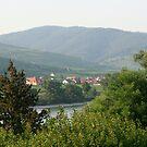 Small village through the trees across the Danube Wachau Austria by Ilan Cohen