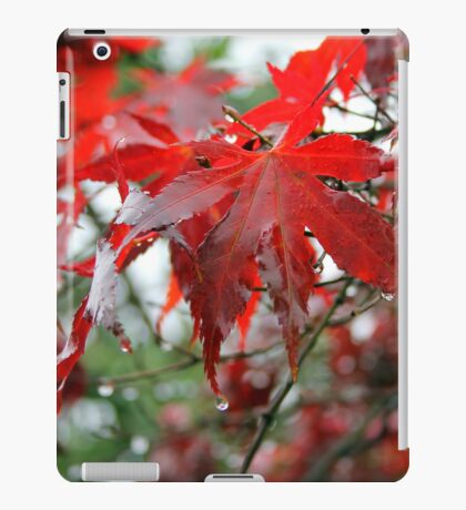 Dangling from the fingertips iPad Case/Skin