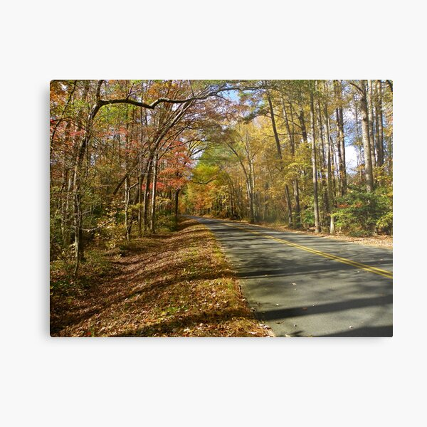 The road to Autumn Metal Print