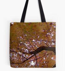 Fall 2013 19 Tote Bag