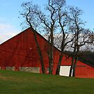 Red Barn - Fall Evening Waynesville Ohio by Tony Wilder