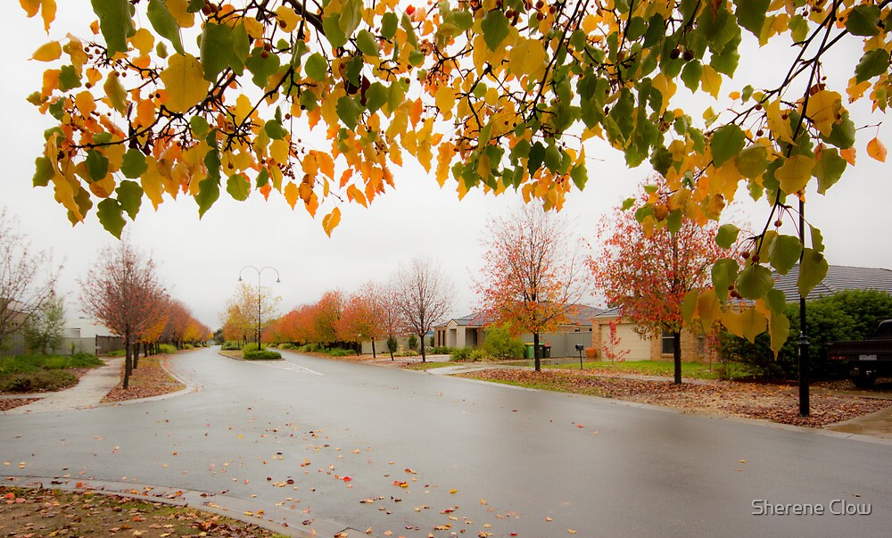 Beauty in Suburbia by Sherene Clow