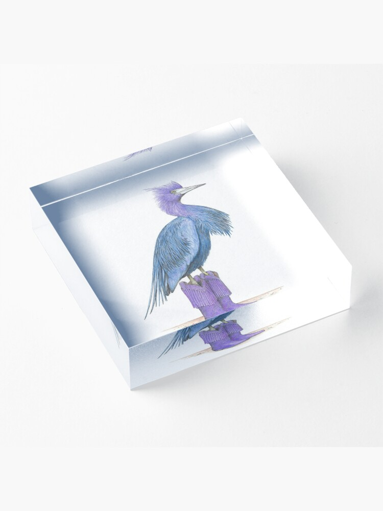 Alternate view of Little blue heron in cowgirl boots Acrylic Block