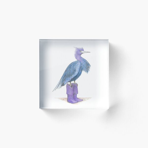 Little blue heron in cowgirl boots Acrylic Block