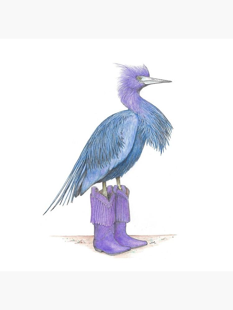 Little blue heron in cowgirl boots by JimsBirds
