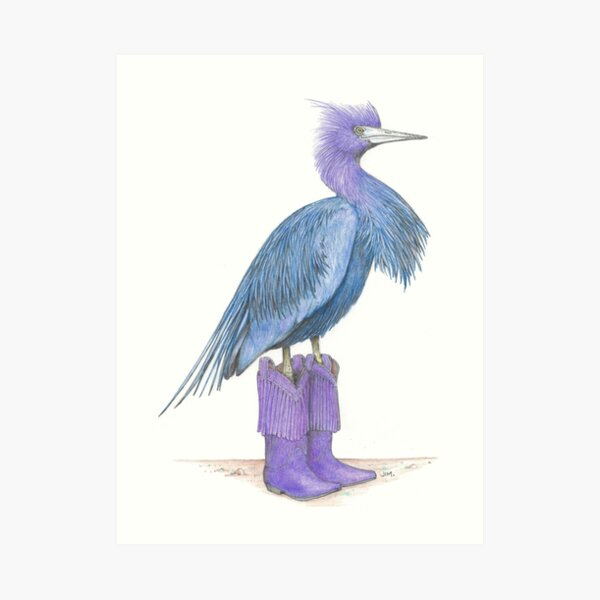 Little blue heron in cowgirl boots Art Print