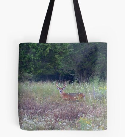 Buck in the Meadow - White tailed deer buck Tote Bag