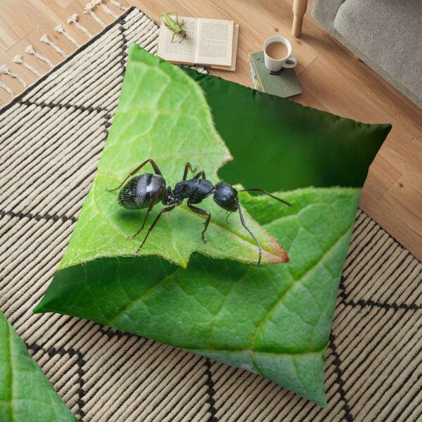Carpenter Ant Floor Pillow