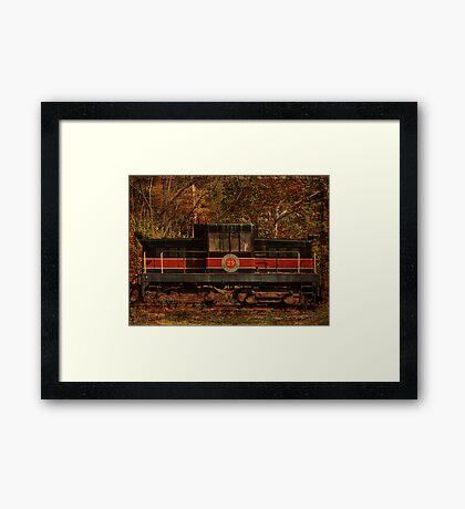 Catskill Mountain Railroad Engine 29 Framed Print