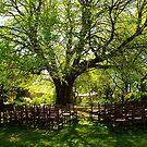 Garden Wedding by Gabrielle  Lees