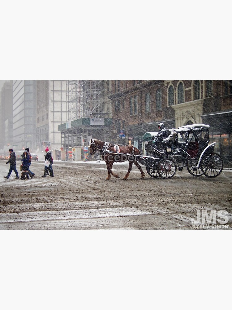 Horse & Carriage in February Blizzard by steeber