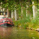 Le Long du Canal du Midi by Jacinthe Brault