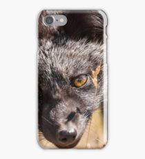 Fox Kit iPhone Case/Skin