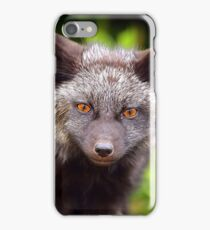 Fox Kit 2 iPhone Case/Skin