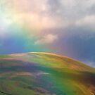 Rainbow by LindyLouMac