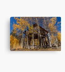 Old Cabin on North Shore Boulevard  Canvas Print
