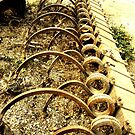 The Beauty of Organic Farm Equipment 2 by waddleudo