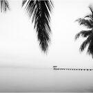 A dock in the Indian Ocean by Fidisoa Rasambainarivo