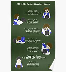 BJJ 101: Basic Elevator Sweep Poster