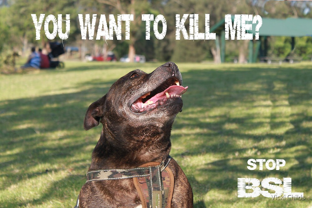 Stop BSL by Vicki Childs