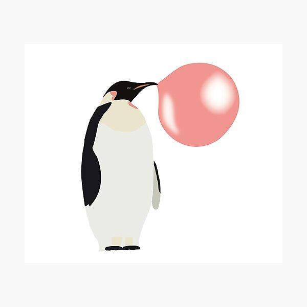 Bubble Gum Penguin Blowing Bubble  Photographic Print