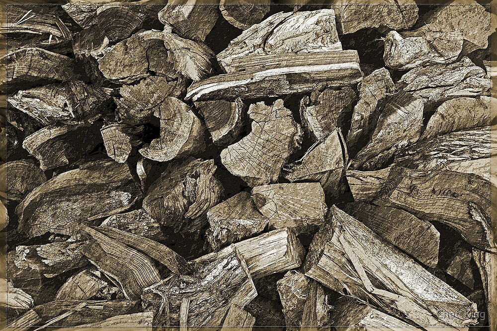 Wood Pile (Ready for winter) by Chet  King