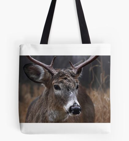 Light from Above - White-tailed deer Tote Bag