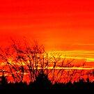 Sky On Fire by ©The Creative  Minds