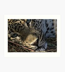Deep In Thought Art Print