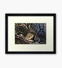 Deep In Thought Framed Print