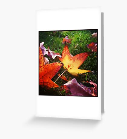 The Wet Flame (square) Greeting Card