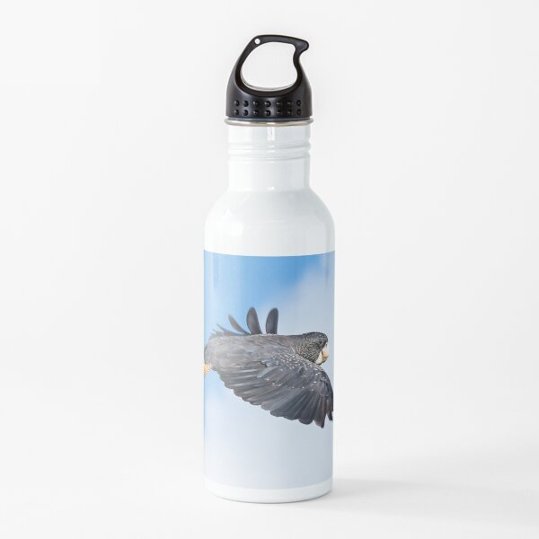 Red-tailed Black Cockatoo in flight Water Bottle