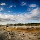 Winyah Bay - South Carolina, USA by Edith Reynolds