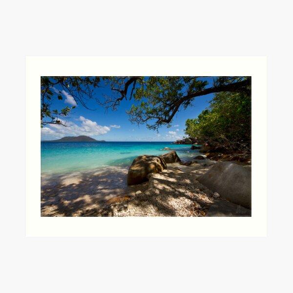 Fitzroy Island 03 Art Print
