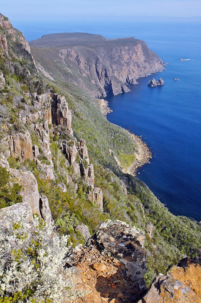 Cape Raoul by Harry Oldmeadow