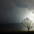 THE TREE OF LIGHT by leonie7