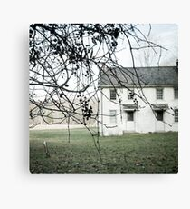 the slightest touch Canvas Print