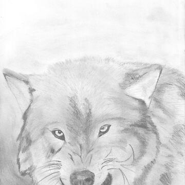 Wolf by DaniJames