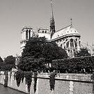 Paris  by careball