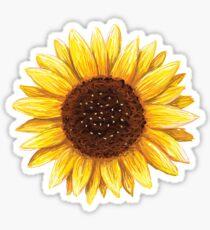Sunflower sticker Sticker