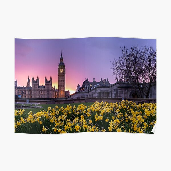 Big Ben and Westminster, London, England Poster